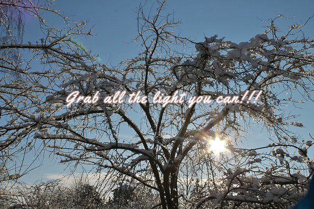 Daglicht in de winter