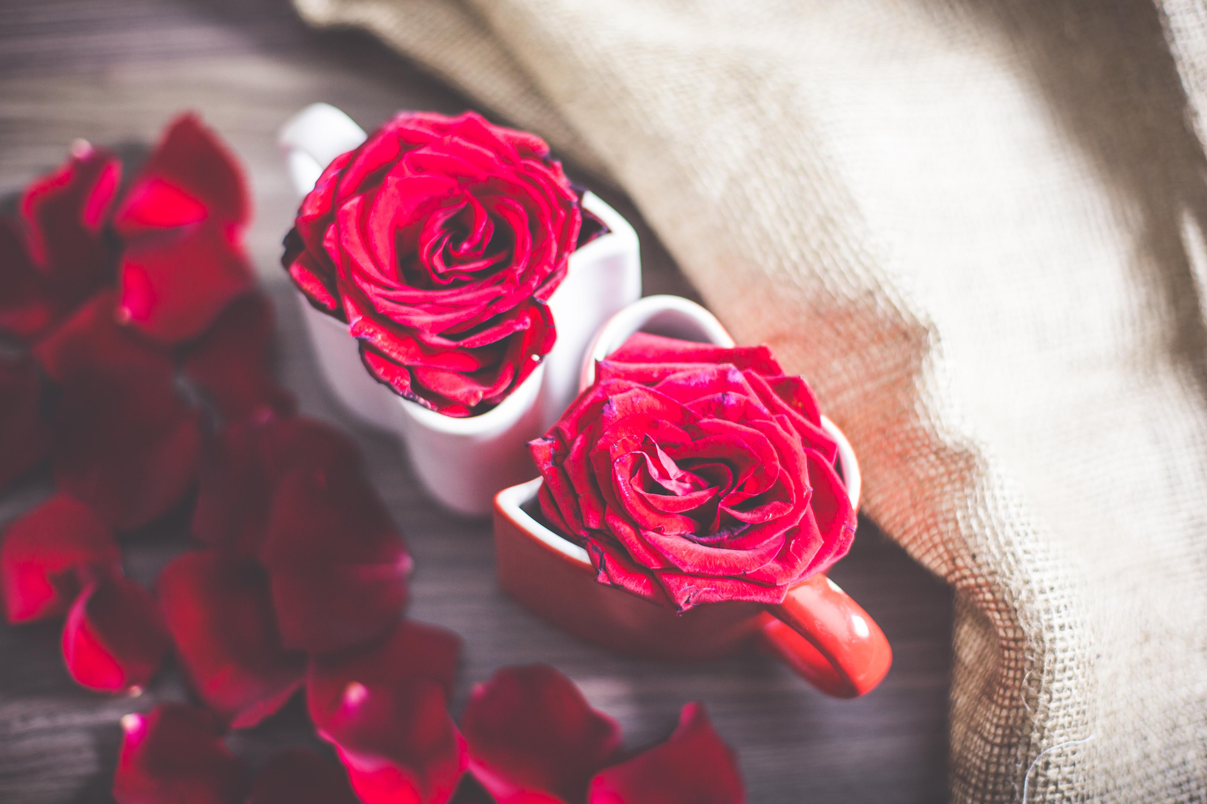 7 tips hoe je een vrouw kunt verrassen met Valentijnsdag!