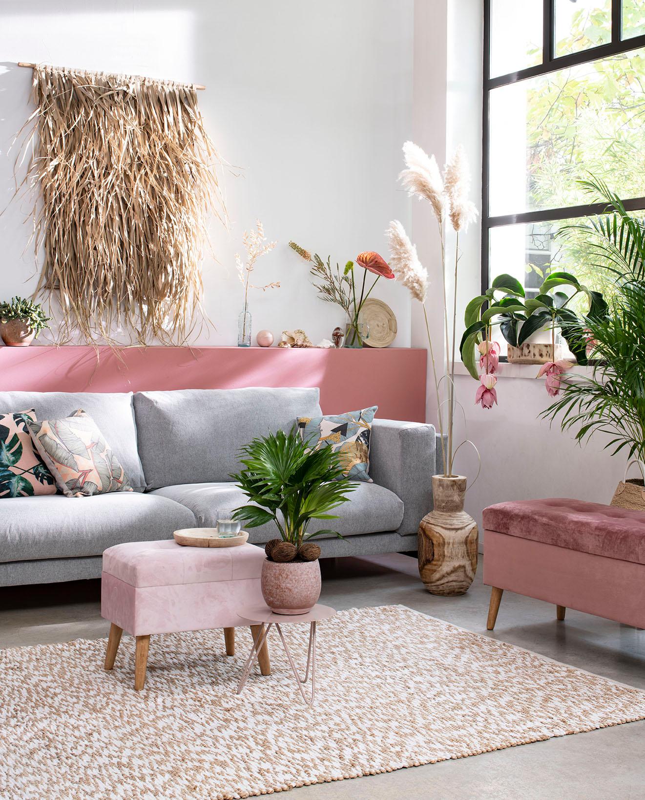 Bloeiende planten trend Intratuin - Summer Breeze