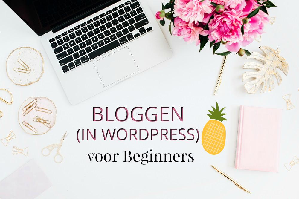 Bloggen (in WordPress) voor beginners foto webshop zomer