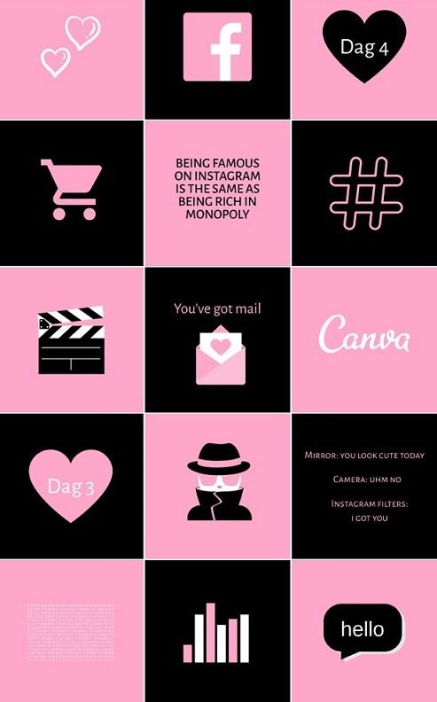 Dé online Instagram cursus die je gevolgd moet hebben: Social Media Star + kortingscode!