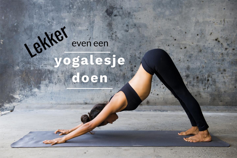 Dé yogales voor beginners - ook als je denkt dat je het niet kan