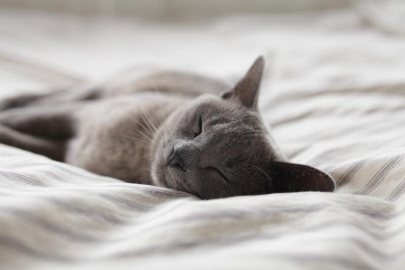 Snel in slaap vallen, zo doe je dat!