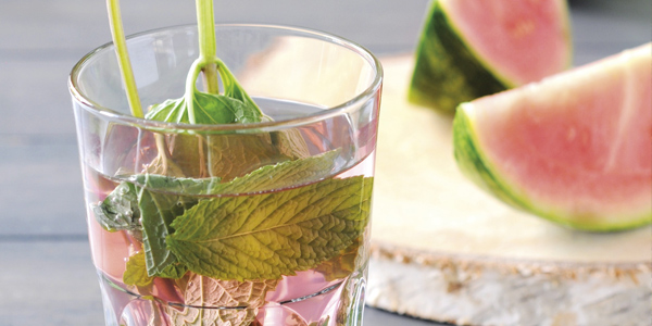 Verfrissende drankjes Intratuin