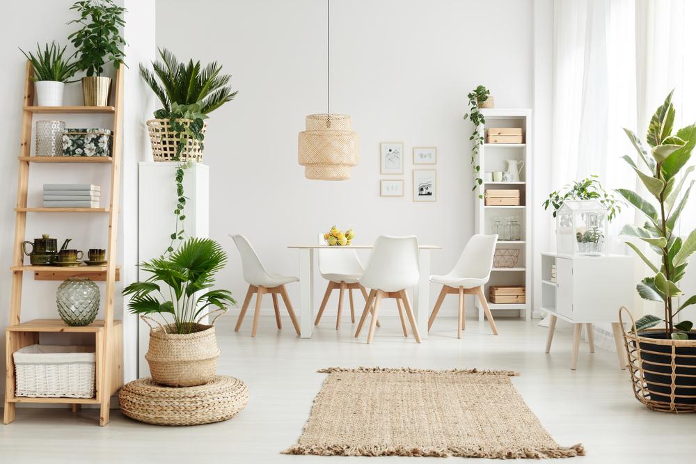 Zet mooie planten neer en vervang de potten